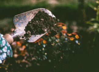 Niezbędne narzędzia do ogrodu
